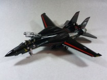 "F-14D Super Tomcat, ""Vandy 1″"