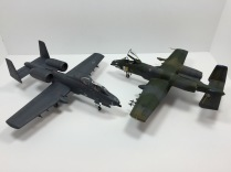 A-10A Thunderbolt II & N/AW A-10A Thunderbolt II