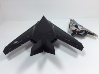 F-117A Nighthawk & Have Blue